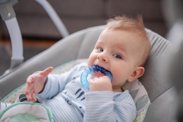 montessori area gustatory, tactile mulut, sensorial system