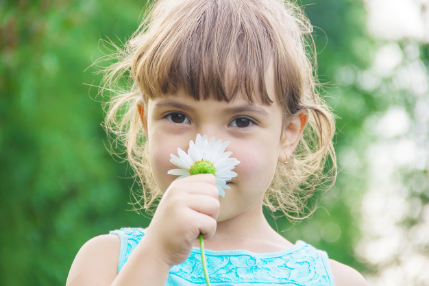 olfactoy input, stimukus indera penciuman anak