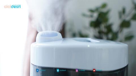 humidifier, diffuser, manfaat humidifier untuk kesehatan
